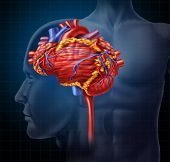 Heart brain shaped human organ as intelligence and research with a cardiovascular pumping blood as a medical and mental health care symbol for active neurons in the body on a black background. poster