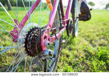 Closeup View Of Bicycle Sprocket On The Rear Wheel Of The Bicycle And Feet On The Pedals
