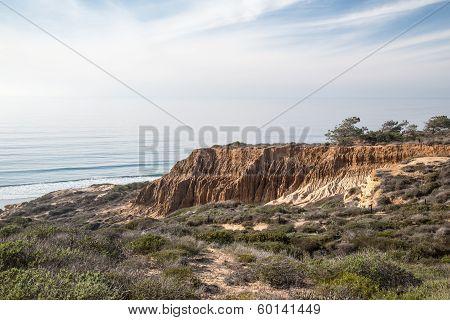 Torrey Pines