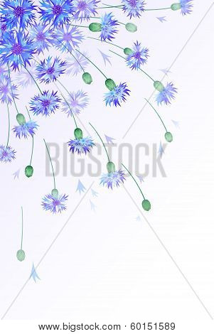 Vertical background with bluebottles