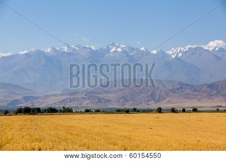 Landscape of mountains at autumn