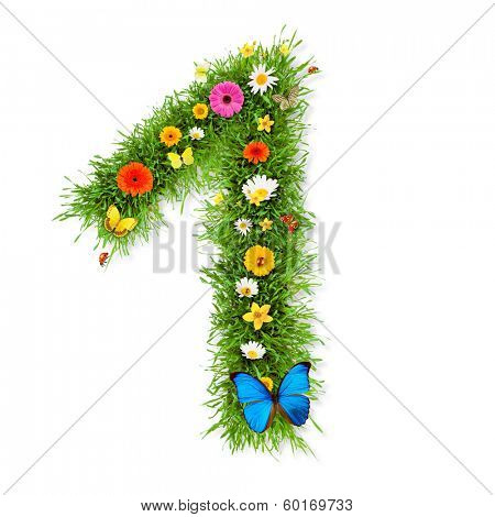 Fresh grass number 1 with blooms and butterflies. isolated on white background poster