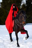 beautiful woman with red cloak with horse outdoor in winter poster