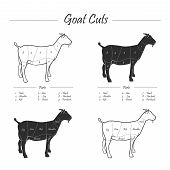 Illustration of Goat meat cut scheme, full colour and linear black and white poster