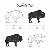 Illustration of Bison meat cut scheme, black and white poster