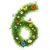 Fresh grass number 6 with blooms and butterflies. isolated on white background poster