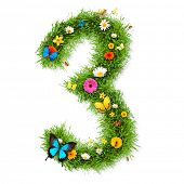 Fresh grass number 3 with blooms and butterflies. isolated on white background poster