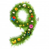Fresh grass number 9 with blooms and butterflies. isolated on white background poster