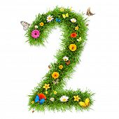 Fresh grass number 2 with blooms and butterflies. isolated on white background poster