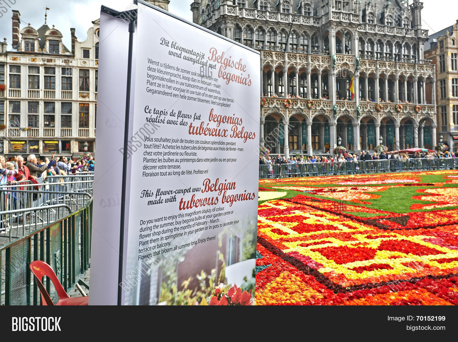 BRUSSELS BELGIUM - AUGUST 15: A giant carpet is made with 600000 begonia flowers within the celebrations of the 50th anniversary of Turkish workers' ...