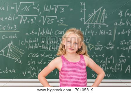 Intelligent Little Girl Child Prodigy In Class
