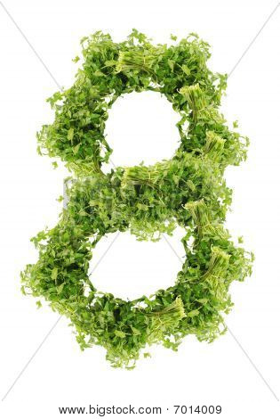 parsley eight digit