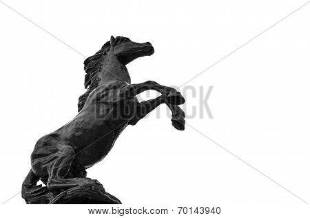 Statues Black Hourses On Isolate