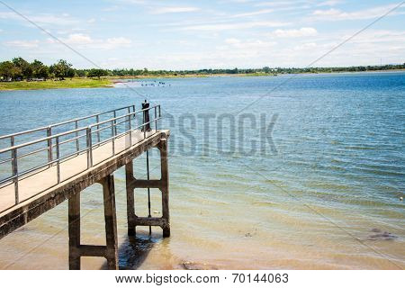 Landscape Background At Dock Of Swamp Korat Province,thailand
