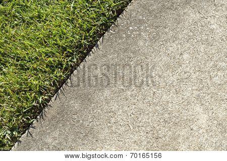 Green Grass Lawn And A Concrete Sidewalk Edge Meet