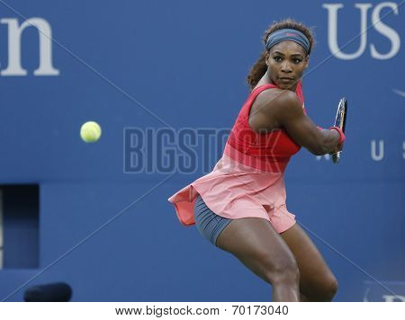 Seventeen times Grand Slam champion Serena Williams during  final match at US Open 2013