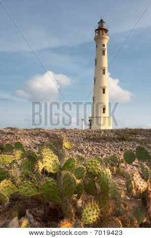 California Lighthouse, Aruba