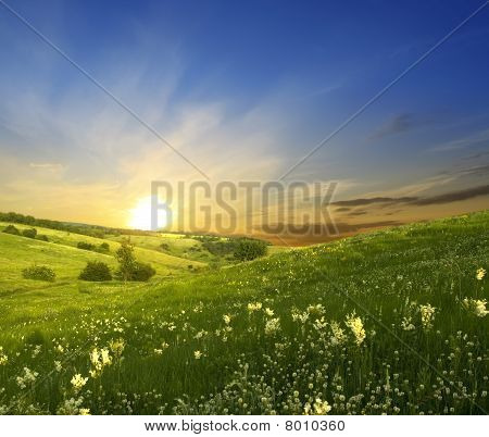 Sunset over green meadow grass and sky with clouds