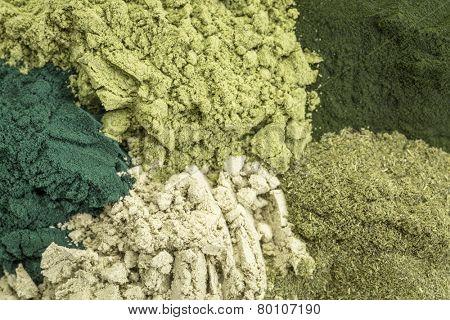 background of five healthy green dietary supplement powders (spirulina, chlorella, wheatgrass, kelp and moringa leaf)