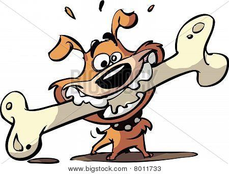 dog with big bone