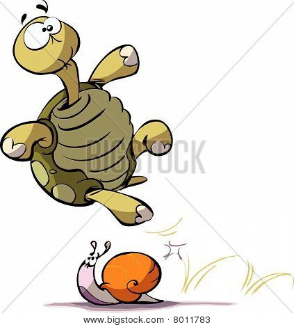 turtle and snail