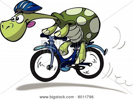 turtle cyclist