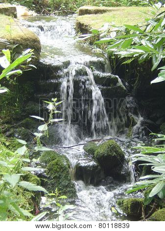 Water Fall in the green
