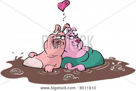 two pigs in love in mud