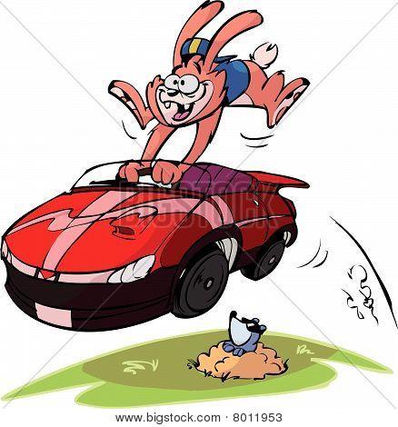 rabbit in fast car