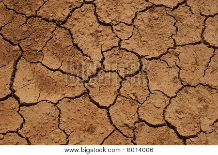 Aridity, parched land after a hot summer poster