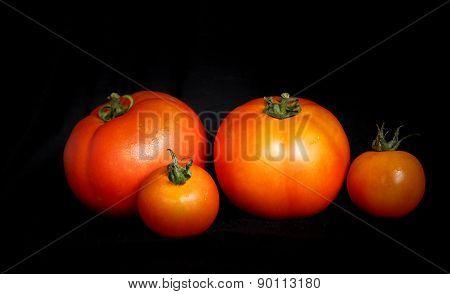 Tomates /Tomatoes