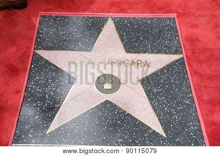 LOS ANGELES - MAY 7:  Sofia Vergara's Star at the Sofia Vergara Hollywood Walk of Fame Ceremony at the Hollywood Blvd on May 7, 2015 in Los Angeles, CA