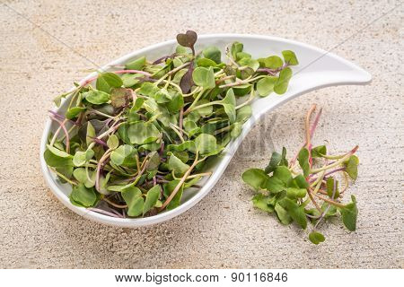 organic micro greens (kale, mustard, pea, herbs) on a ceramic teardrop shaped bowl against grunge bran wood