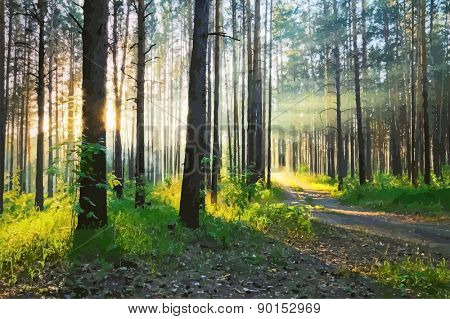 beautiful sunset in the woods, vector