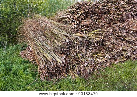 Closeup Of Tied Osiers On A Large Heap