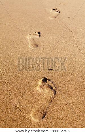 Three Human Footprints On The Beach Sand