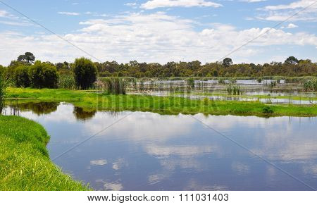 Beelier Wetlands: Lake Landscape