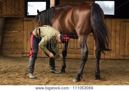 Cossack Grooming Horse In The Stall