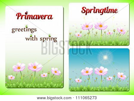Three Spring Positive Templates With Pink Flowers On Lawn