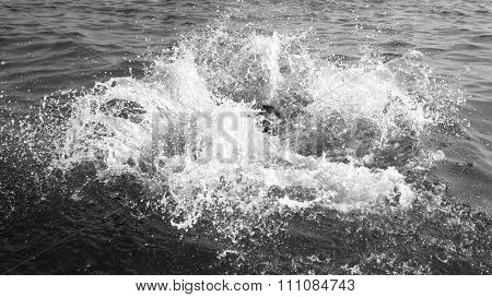 Drowning Man Trying To Swim Out Of The Ocean Black And White