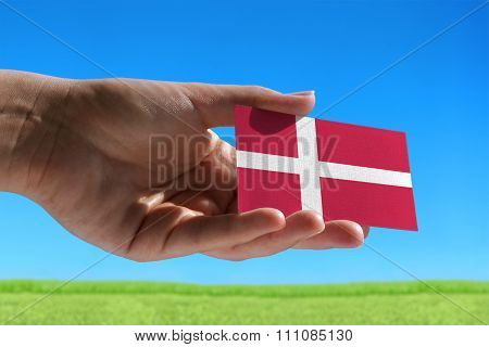 Small Flag Of Danmark