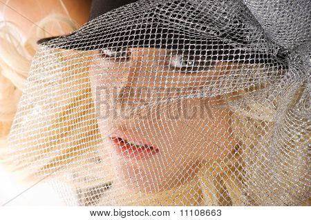 The Girl With Silver Net