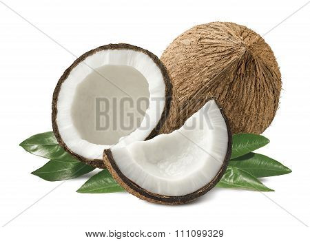 Coconut Composition Leaves Isolated On White Background