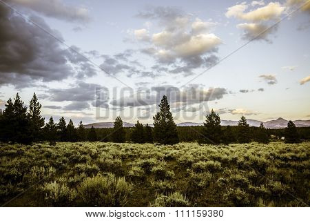 Landscape in Colorado