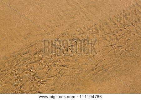Atlantic Coast. Sand In The Details. Morocco.