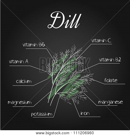 Vector Illustration Of Nutrients List For Dill On Chalkboard Backdrop