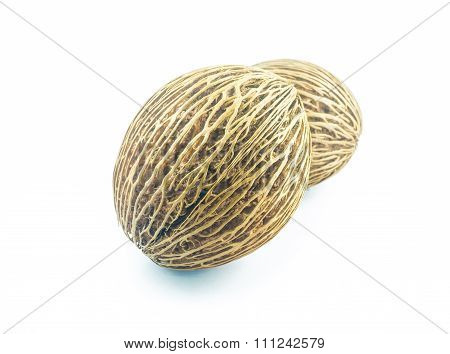 Cerbera Oddloam's Seed, Pong Pong Seed Or Othalanga On White Background