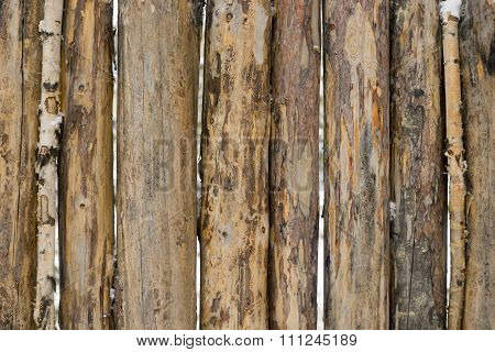 pine logs in the fence, background.