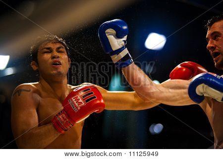 Muay Thai Boxing Uppercut Sweat Flying