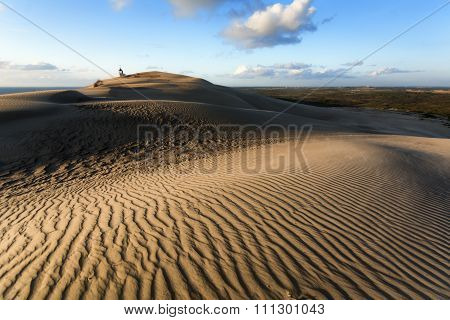 Day In The Dunes